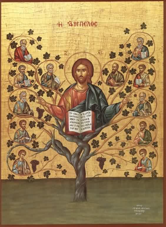 Christ the vine.jpg