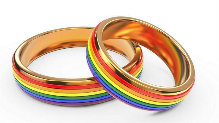Gay wedding rings.jpg