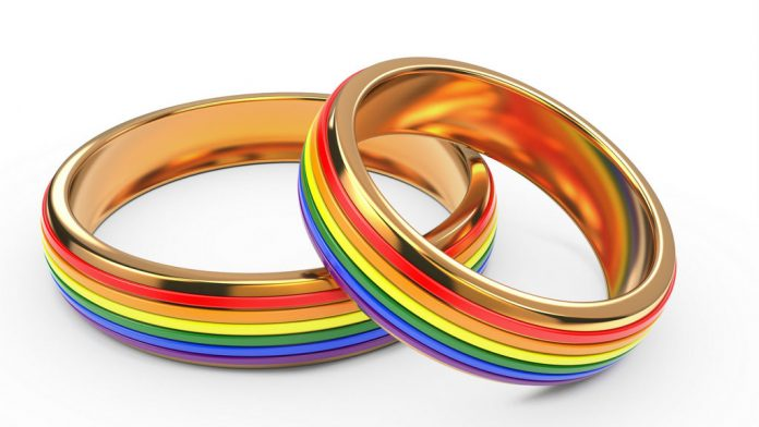 Gay wedding rings.jpg